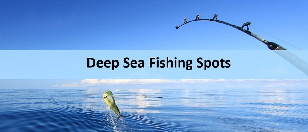 Best Deep Sea Fishing Spots: 15 Recommended Places
