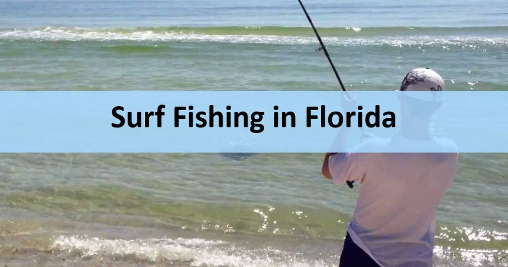 Top 5 Florida Places You can Fish without a Boat