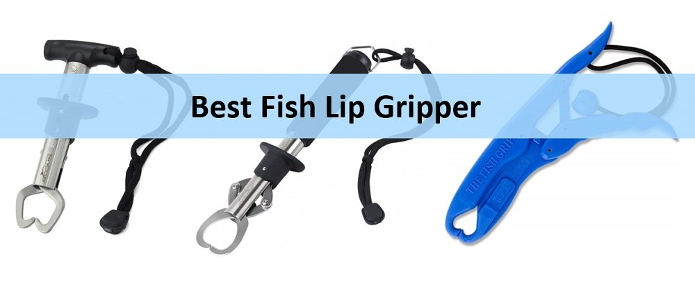 Best Fish Lip Gripper Reviews