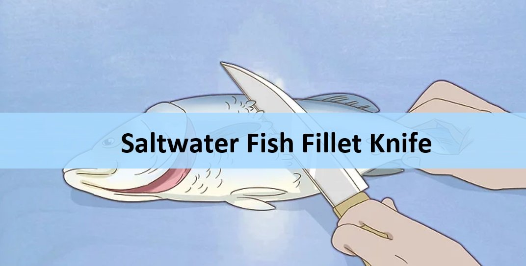 Best Fillet Knife for Saltwater Fish (Featured Image)