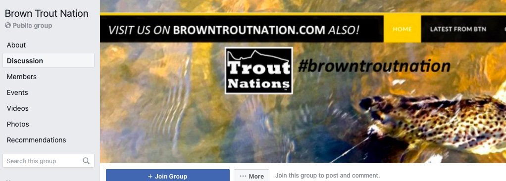 Brown Trout Nations
